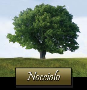 Piante micorizzate emilia romagna toscana e for Pianta nocciolo prezzo